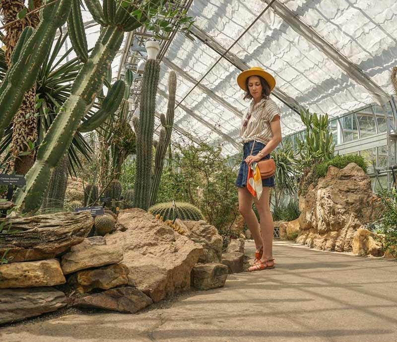 @a.renaissance.woman - World Deserts Room at the United States Botanic Garden - Free things to do in Washington, DC