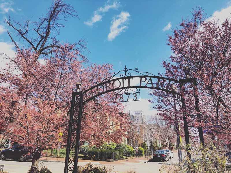 @ashleythart - Primavera en LeDroit Park en Washington, DC - Cosas que hacer en Bloomingdale