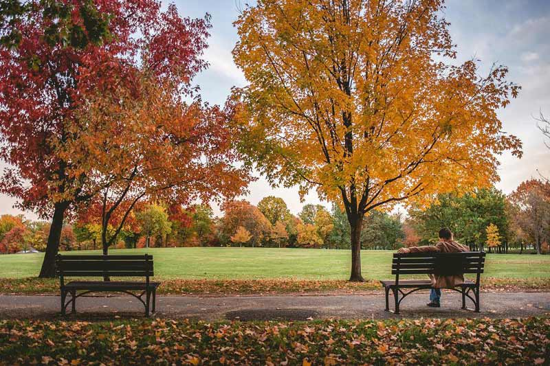 @billyhoag1 - Fall foliage at Constitution Gardens - The National Mall in Washington, DC