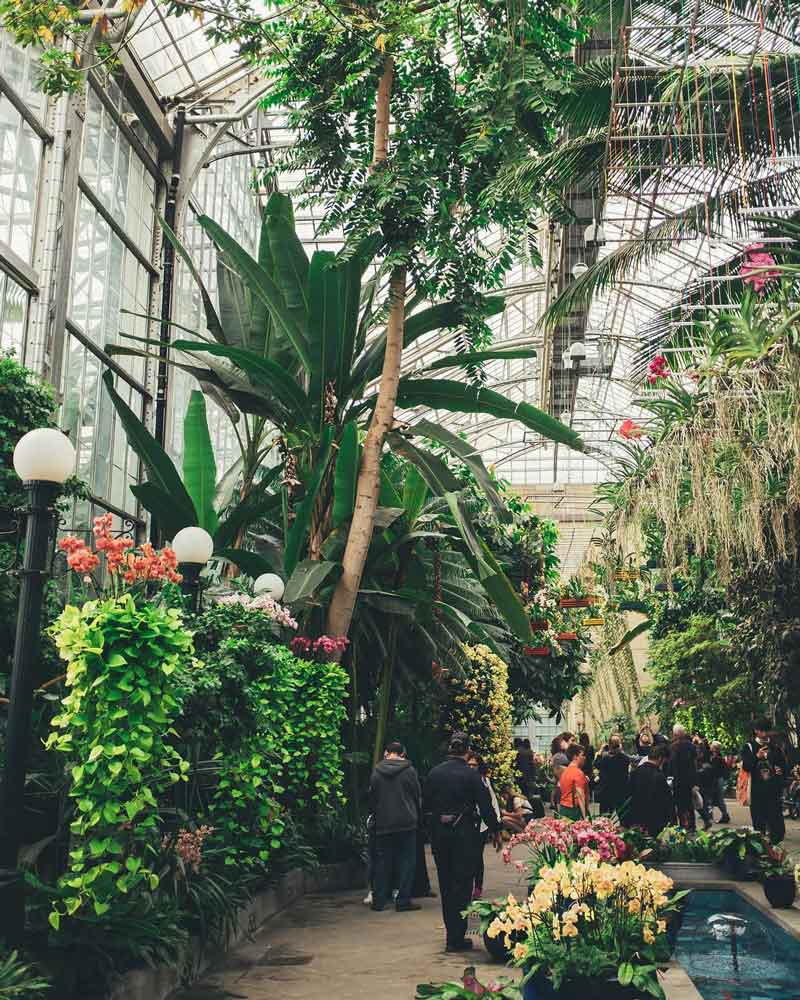 @chivophotos - United States Botanic Garden on the National Mall - Free museum and attraction in Washington, DC