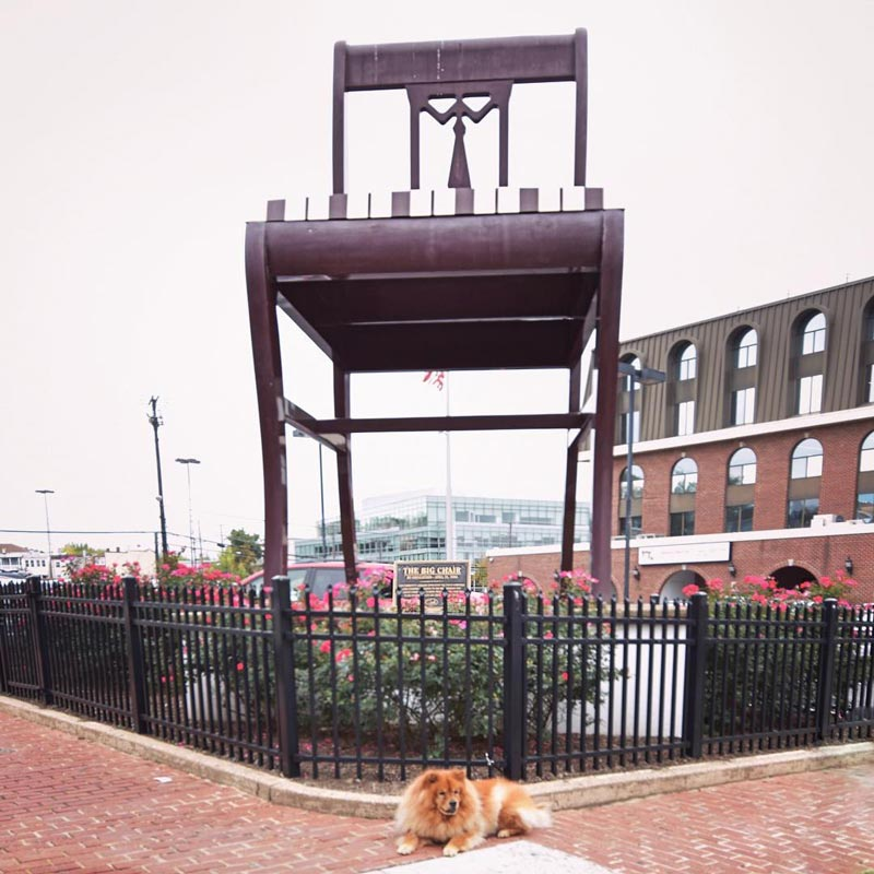 @izzy_the_chow - Dog in front of the Anacostia Big Chair - Off-the-beaten path activity in Washington, DC