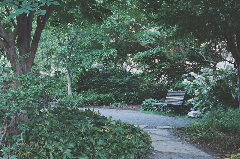 @skyleraevans - Crispus Attucks Park en Bloomingdale - Parques públicos en Washington, DC