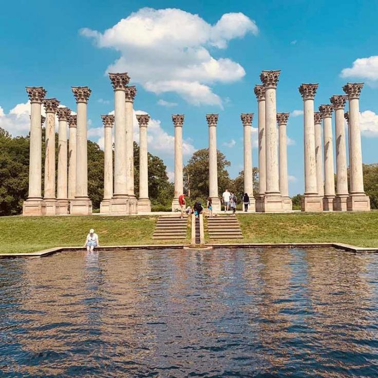 @cam_ev - Summer scene at the National Arboretum National Capitol Columns - Free outdoor activities in Washington, DC