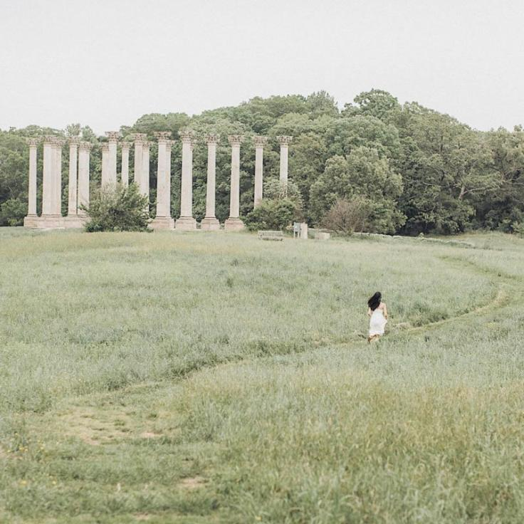 @joydinio - Capitol Columns at the National Arboretum - Public Parks and Gardens in Washington, DC
