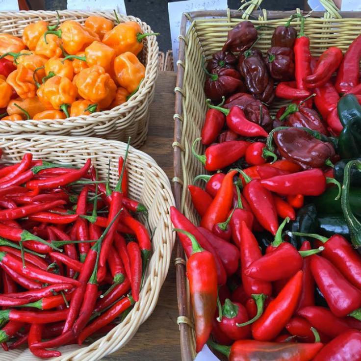 @lechefswife - Frische Produkte auf dem Dupont Circle Farmers' Market - Bauernmärkte in Washington, DC