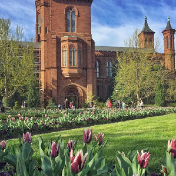 @nothing_but__flowers - Visitors at the Smithsonian's Enid A. Haupt Garden - Public garden in Washington, DC