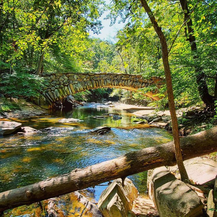 Naturszene mit Bach und Brücke im Rock Creek Park