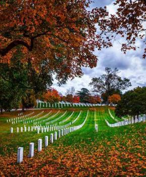 @tomberrigan - Fall foliage at Arlington National Cemetery - Important sites to see at Arlington National Cemetery