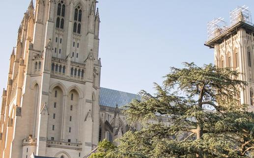 Washington National Cathedral in Upper Northwest - Things to do in Washington, DC