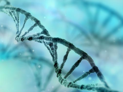 Verbundene Gemeinschaft - Biotech/Pharma