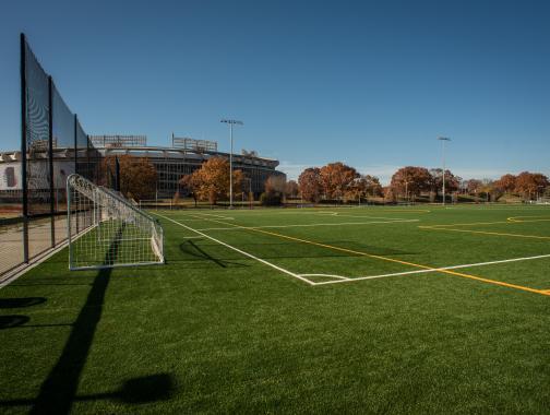Los campos en el campus RFK