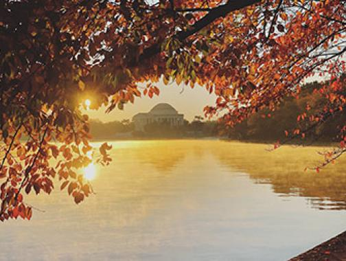 @ jbano1 - Jefferson Memorial en otoño