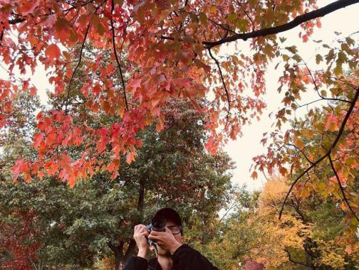 @ktkreitman - Photographing fall foliage on the National Mall - Fall in Washington, DC