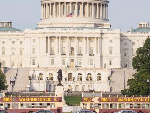 Entdecke Optionen für Gruppentransporte und mehr in Washington, DC