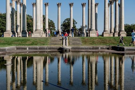 Arboreto Nacional de los Estados Unidos en Washington, DC: atracción al aire libre gratuita para familias