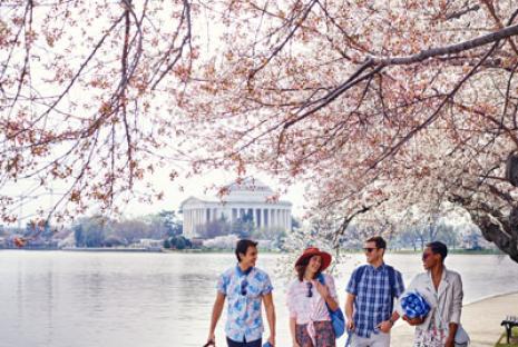 Itinerarios de Washington, DC: planifique su viaje a DC